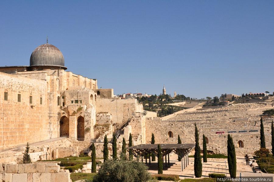 Панорама  Масличной Горы открывается на пути к Западной стене на Храмовой Горе (