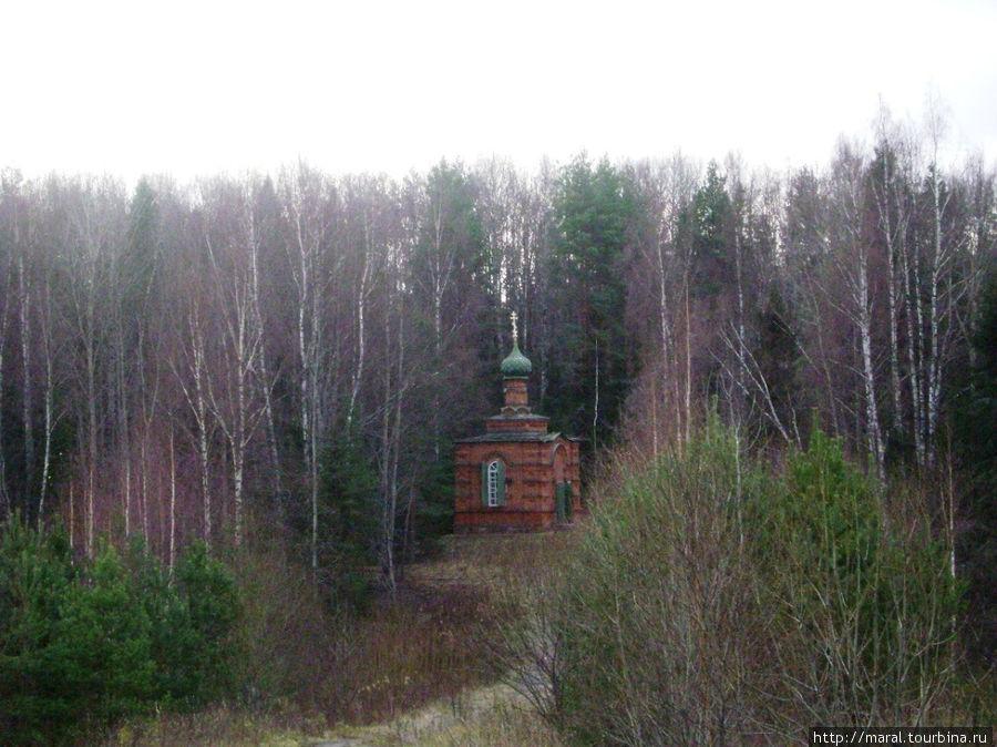 Тропа Ивана Сусанина начинается от деревни Деревеньки — малой родины национального героя