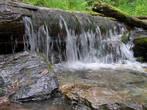 самая вкусная вода — здесь, в многочисленных родниках и  ручьях