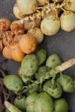 трехцветные кокосы