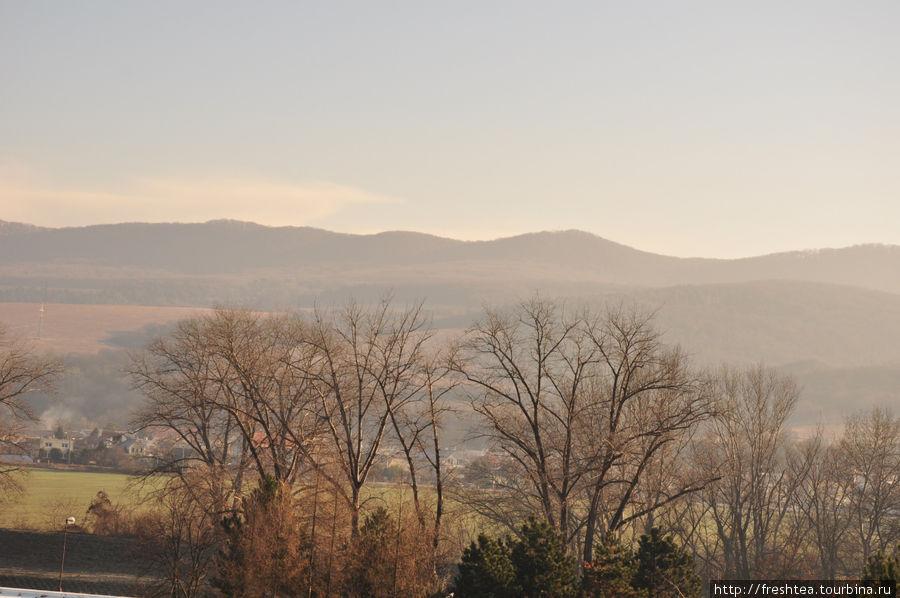 Вид из моего номера на окрестные холмы погожим утром во 2-ой половине декабря.