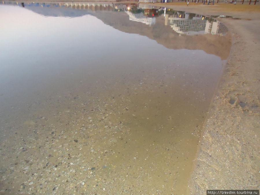 Вода прозрачная и на ощупь маслянистая, жизнь в Мёртвом море полностью отсутствует, даже рыба, заплывшая в море из реки Иордан, сразу погибает