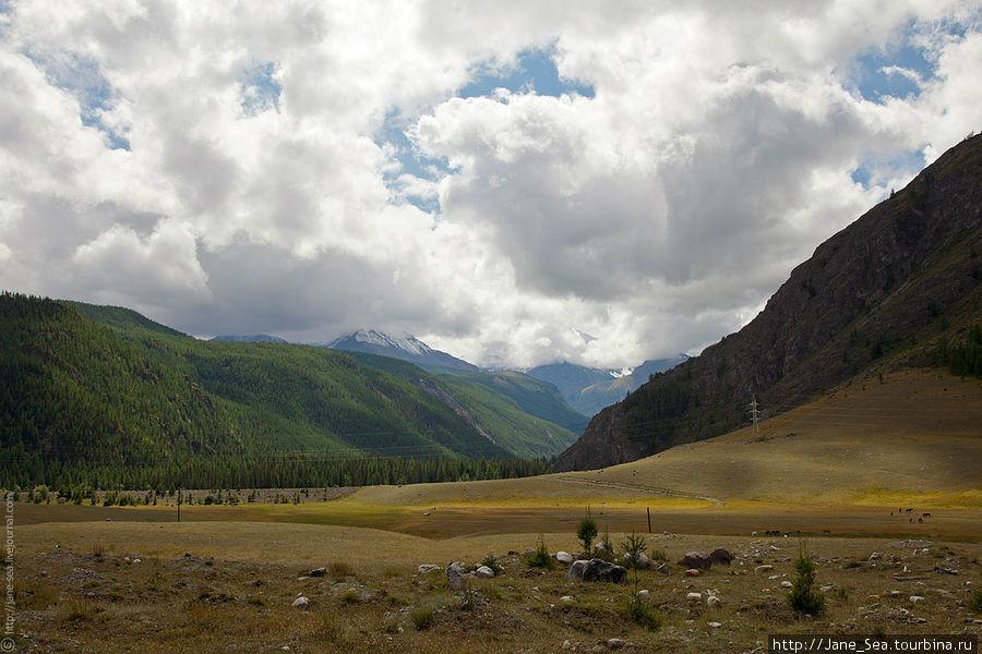 Изменившиеся пейзажи после села Акташ. Как будто преодолел не одну сотню километров, на деле же всего несколько десятков.