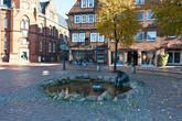Штаде был ганзейским городом, как и Бремен, Гамбург и Любек. Однако из-за приема в 1587 г. английских купцов, торговавших сукном, Штаде был в 1601 г. исключен из Ганзы. В период шведского господства (1645-1712) город был превращен в административный центр и стал крепостью европейского значения. Издержки европейских войн Швеции ослабляли экономический потенциал города и в 1715 г. он попал под влияние Ганновера, причем надолго. Только в XIX в. город медленно возродился и смог присоединиться ко всеобщему экономическому подъему. Укрепления вокруг города стали срывать только с 1880 г., сейчас по этим валам, окружающим город, можно просто гулять и смотреть на реку