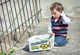 В остальном их жизнь проходит очень размеренно и медитативно. Детишки нежатся на солнышке и сами находят себе игрушки — порой самые неожиданные.