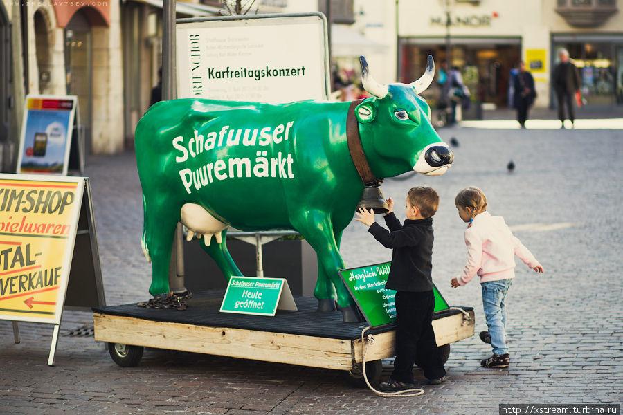 Коровка с колокольчиком — хорошее развлечение для детей — сначала позвонили, потом пошли доить:) Шаффхаузен, Швейцария