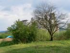 Середнянский замок единственный в Закарпатье был сооружен не на возвышенности, а на равнине.