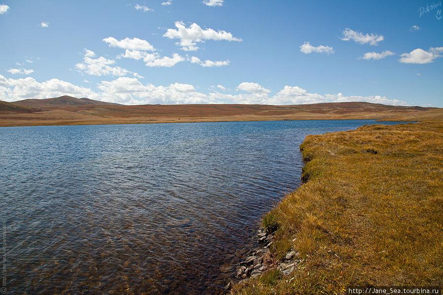 Снова Тархатинское озеро. Здесь нещадно дует ветер, термометр показывает +26, а открытые части тела замерзают, как при 0.
