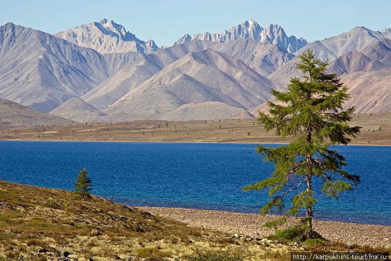 Озеро Водораздельное в истоках реки Лабынкыр. На карте изображено, что именно из этого озера и берёт начало река Лабынкыр, но на месте картина предстала несколько другая. На самом деле исток реки расположен на склонах окружающих гор, из озера же вода начинает вытекать в Лабынкыр лишь при очень её высоком уровне.