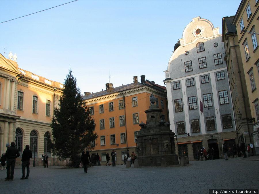 Площадь Стурторьет