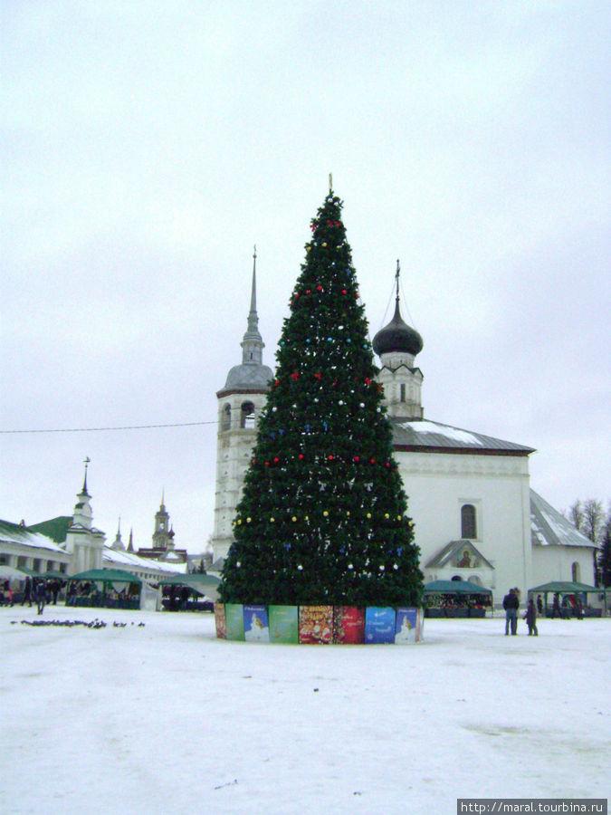Главная городская ёлка на Торговой площади
