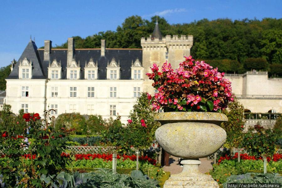 Замок Вилландри со стороны парка.