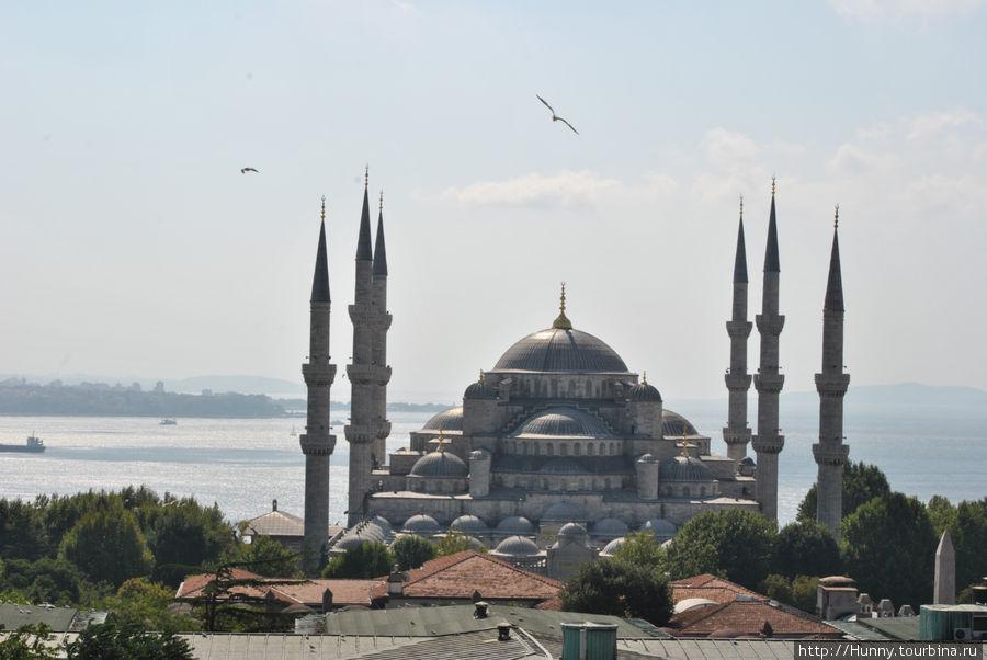 Голубая мечеть (Sultanahmet)