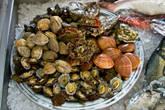 Выбор морепродуктов в ресторане на набережной
