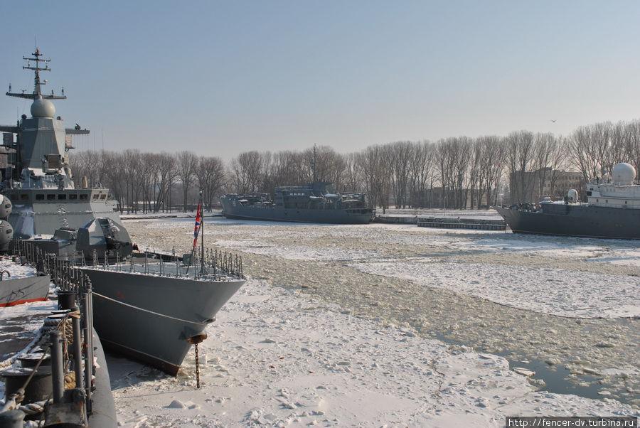 У замерзших причалов Балтийск, Россия