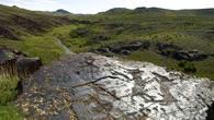 Этим петроглифам эпохи бронзы более трех тысячелетий. Древний кочевник изобразил на поверхности камня схватку двух жеребцов.