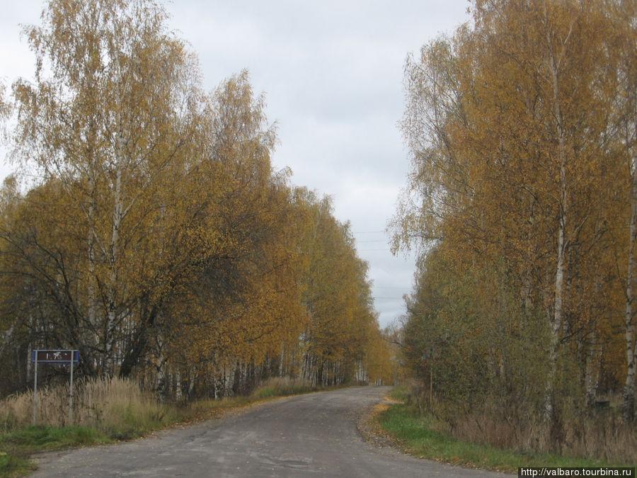 Дорога на Гнусово.
