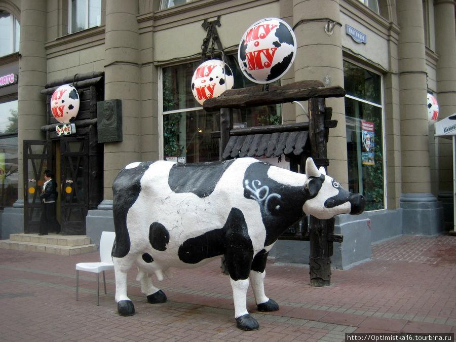 Корова у