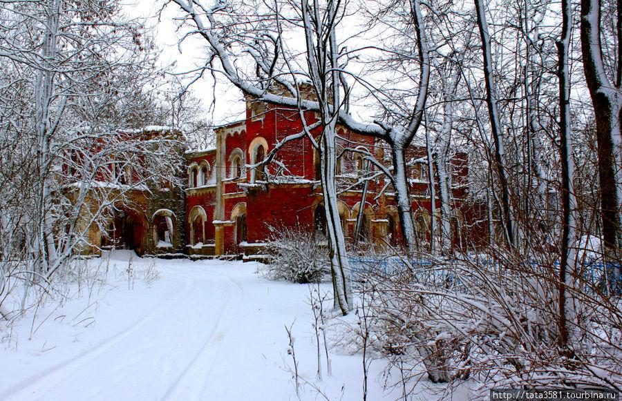 Усадьба баронов Врангелей — летом, осенью, зимой Торосово, Россия