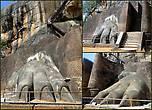 Лапы несуществующего льва. Ходят слухи, что скала Сигирия скрывает в себе древние сокровища, которые и должен был охранять каменный лев