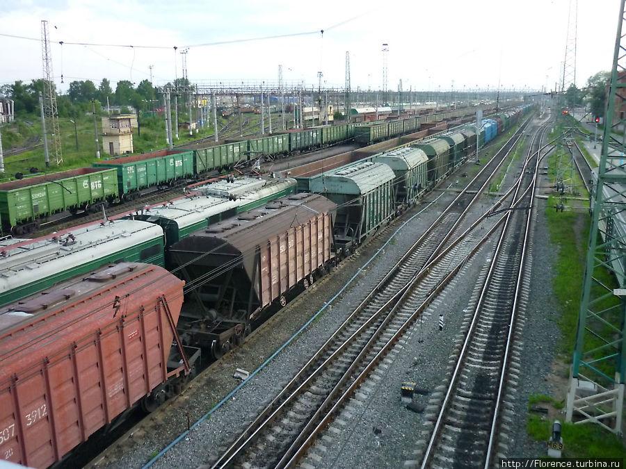 Железнодорожные джунгли, вид сверху