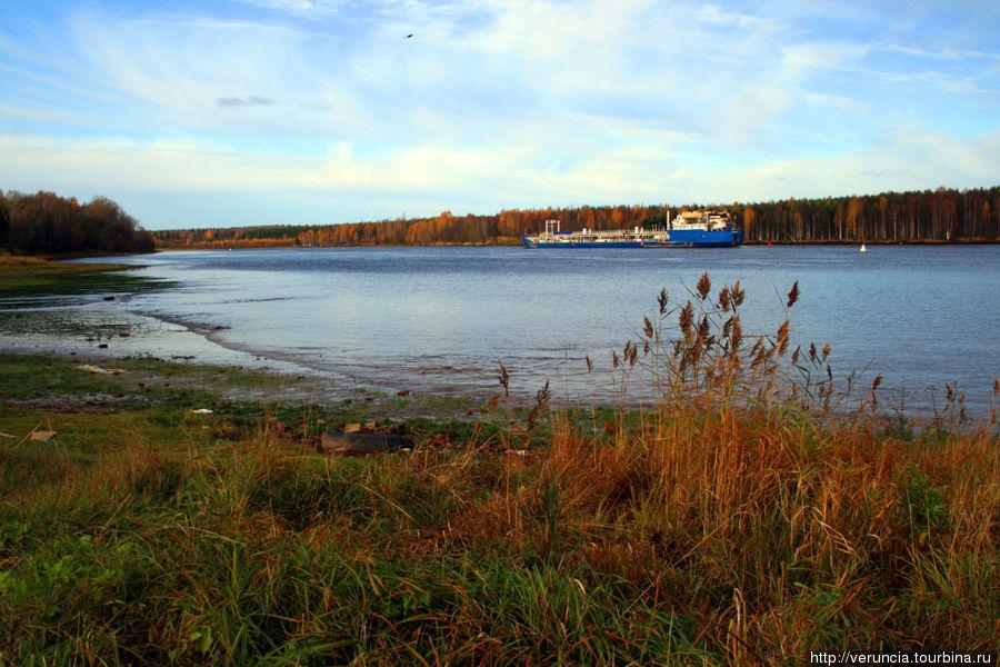 река Свирь в Лодейном Поле
