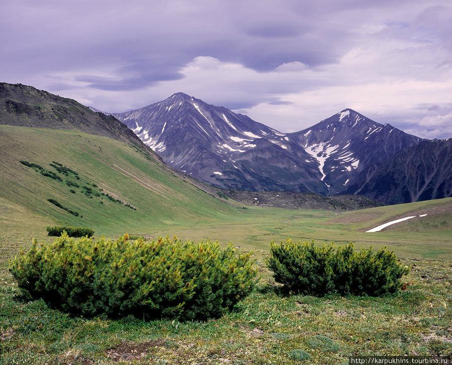 На перевале между Бакенингом и Ново-Бакенингом. Вид на восток. Под дальними горами лежит озеро Медвежье.