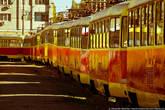 Видимо, в Волгограде профицит трамваев.