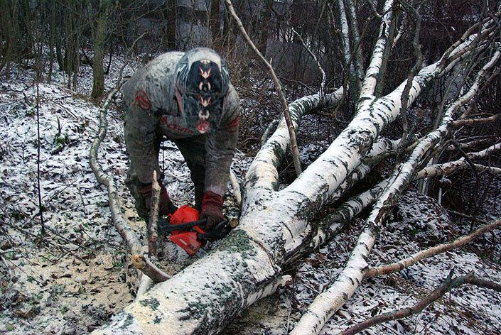 Семь километров между Ленинградской слободой и Белыми Озерками пришлось идти пешком с бензопилой в руках.