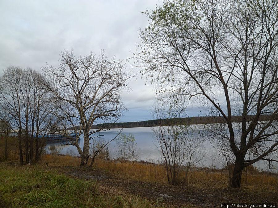 Волга у Рыбниц Ярославская область, Россия