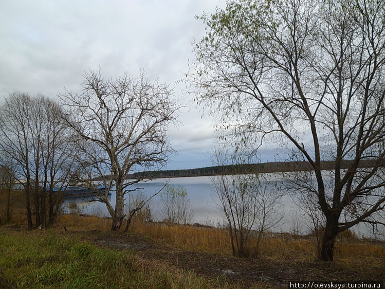 Волга у Рыбниц