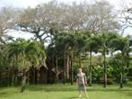 в ботаническом саду (дом на дереве)