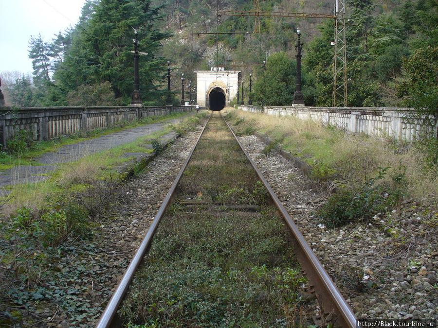 Железная дорога заросла травой