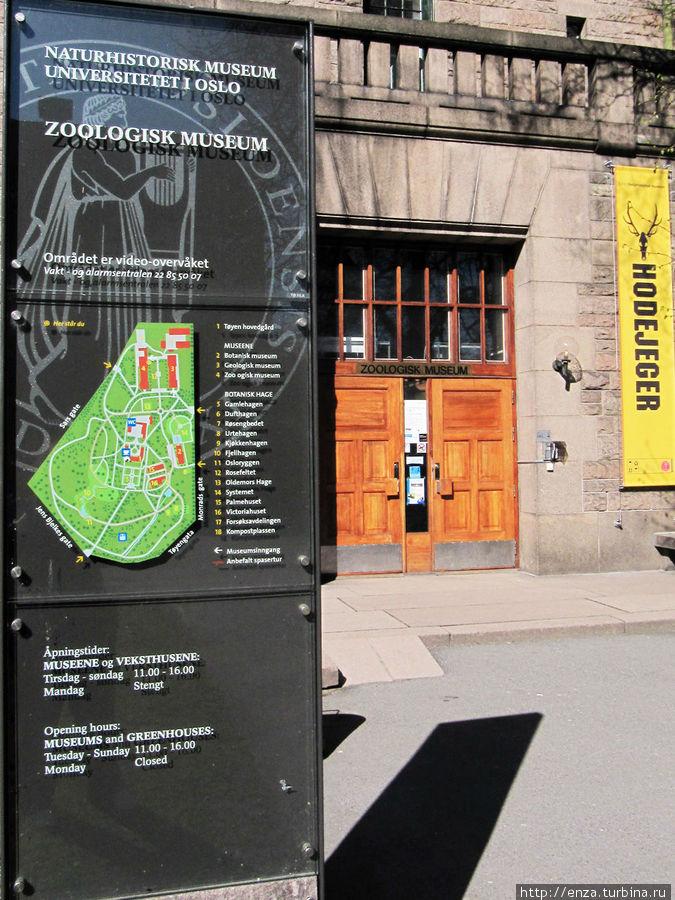 Музей зоологии.