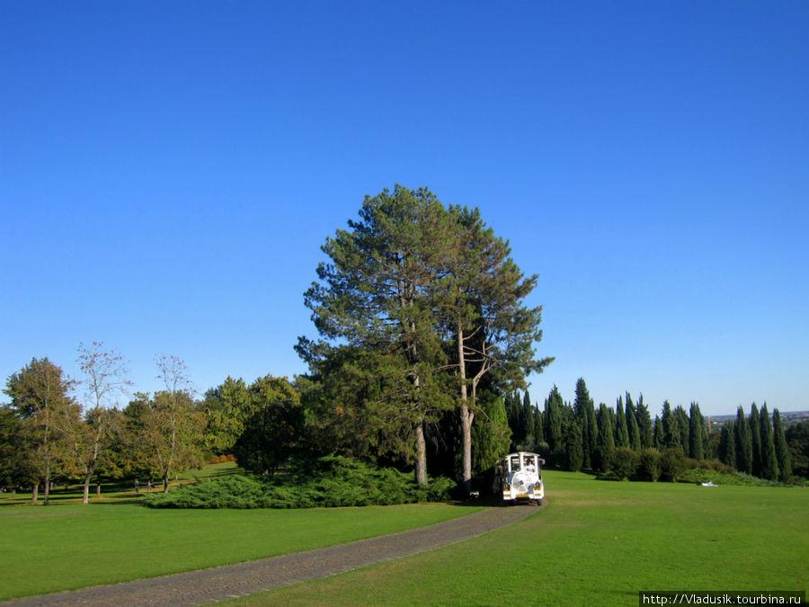 Можно еще осматривать парк на паровозике, но на нем почти никто не ездил