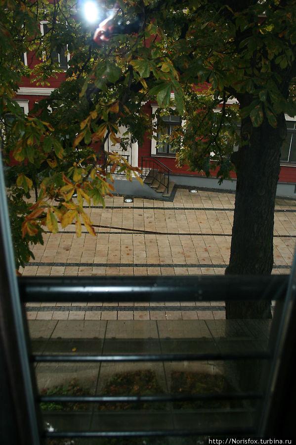 Вид из кухонного окна во двор отеля