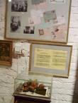 Гриб чага, целебные свойства которого выявил доктор из Александрова, помог Солженицыну и другим раковым больным