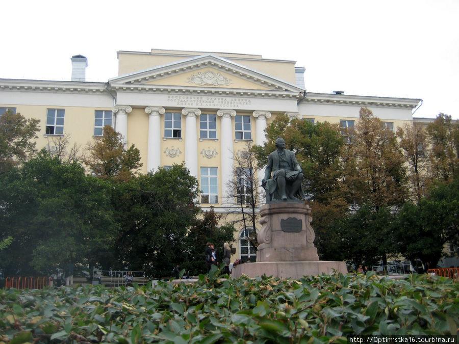 Памятник М.В. Ломоносову на Моховой. Я фотографировала его в сентябре 2011 года.