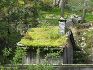 Сочность норвежской зелени поражает