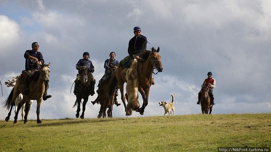 Для казаха лошадь всегда была не только средством передвижения, мерилом богатства и одним из источников пищи. Лошадь –  один из самых важных элементов мироощущения и жизненной философии кочевника. Тараз, Казахстан