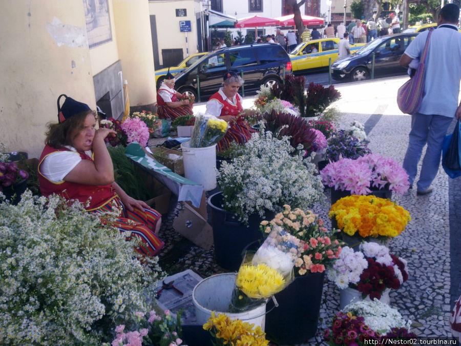 Фуншал. У входа на городской рынок. Цветочницы в национальных костюмах. Снято на телефон.