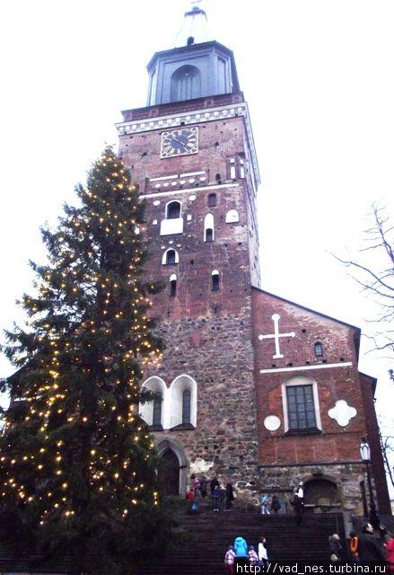 Турку. Кафедральный собор и главная елка страны.