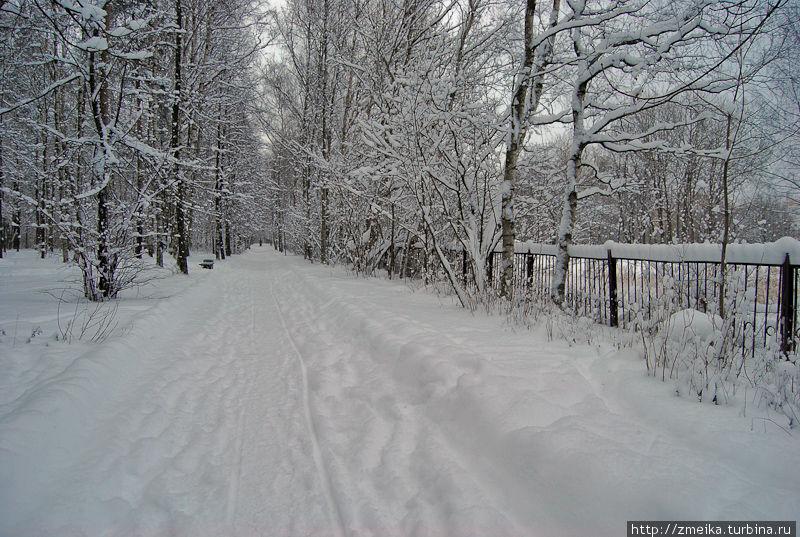 Немного зимних видов парка. Дорожки зимой здесь стараются тщательно очищать, даже самые небольшие.
