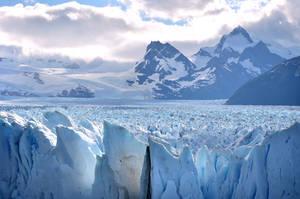 И зачарованно смотреть вдаль — на уходящий в бесконечность ледяной лес..