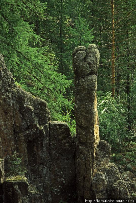 Природа — лучший скульптор.