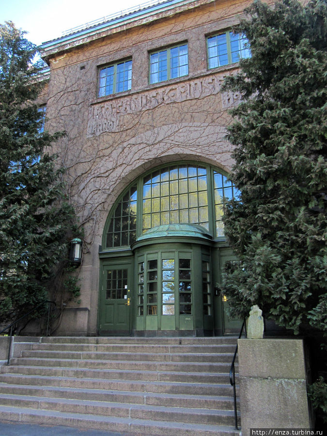Музей естественной истории.