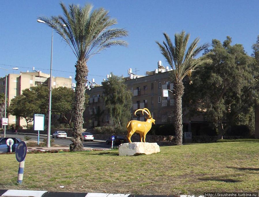 бизнес!??Всем город арад израиль фото пуловер