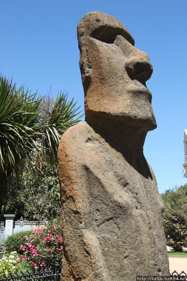 Настоящий моаи с острова Пасхи