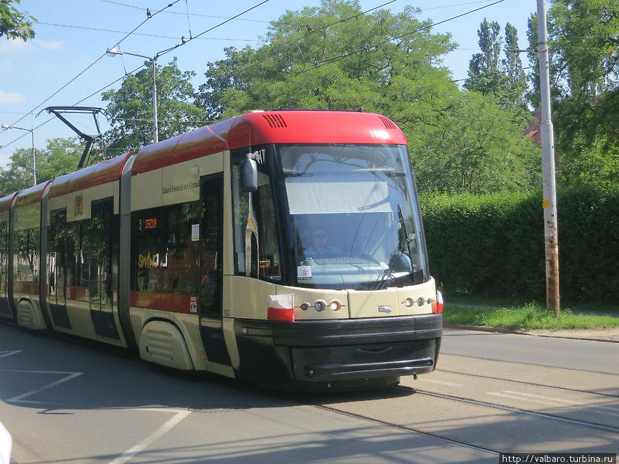 Те самые новые трамваи, в которых чувствуешь себя человеком, а не шпротой в банке.