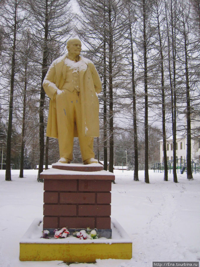 Кукобойский Ильич — золотистый Пан Лимон ))